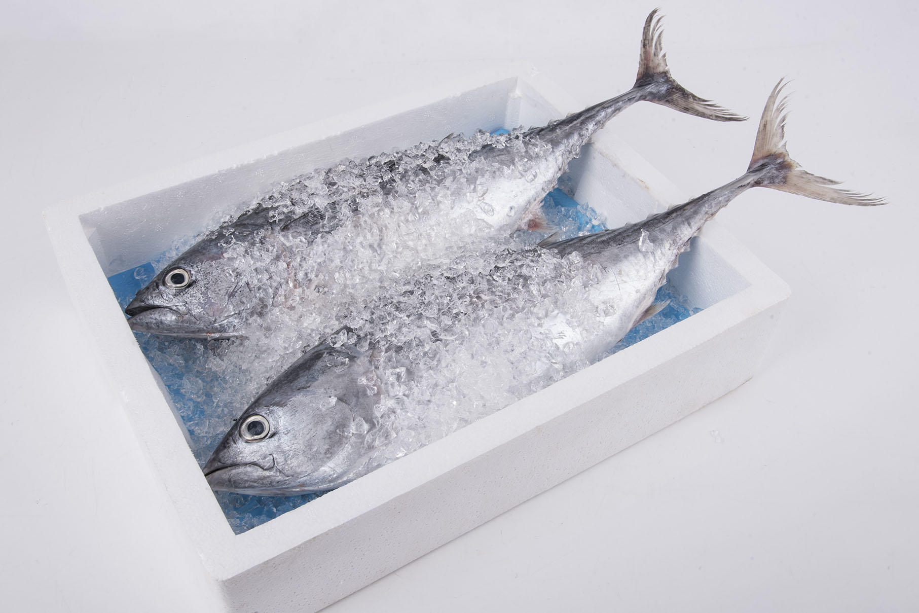 Custom Design absorbent seafood pad-1